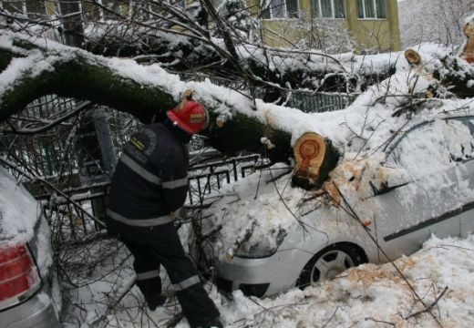 Maros megye 70 településén nincs áramellátás, 37 fa kidőlt a hóvihar következtében