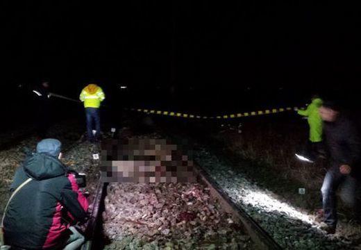 Halálra gázolt a vonat egy juhászt; több juh és kecske is elpusztult