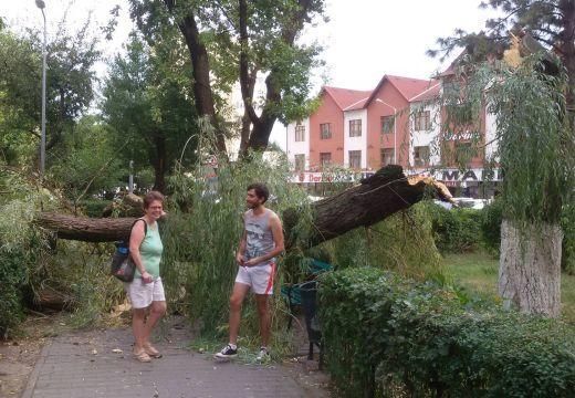 Letépte a vihar a házak tetejét – kidőlt fák Marosvásárhelyen