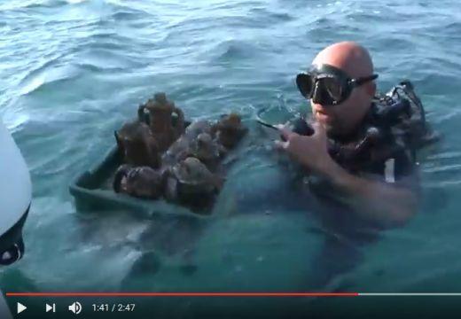 Víz alatti borászat nyílt Horvátországban – nézd meg a felvételt!