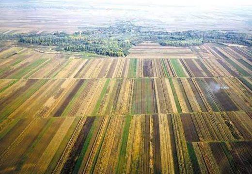 Capital: évente tíz százalékkal drágul a termőföld Romániában